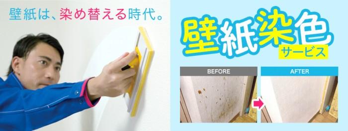 壁紙染色サービス